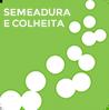 semeadora